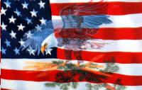EAGLE - USA FLAG