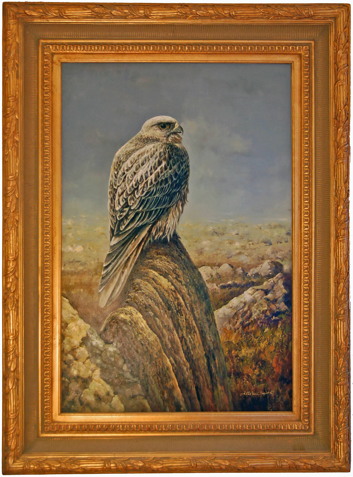 Allstone Smith. Falcon sitting on top of mountain. Size of picture 24-inch x 36-inch. Sold framed 35-inch x 47-inch. $3,995.